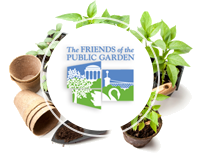 Friends of the Public Garden